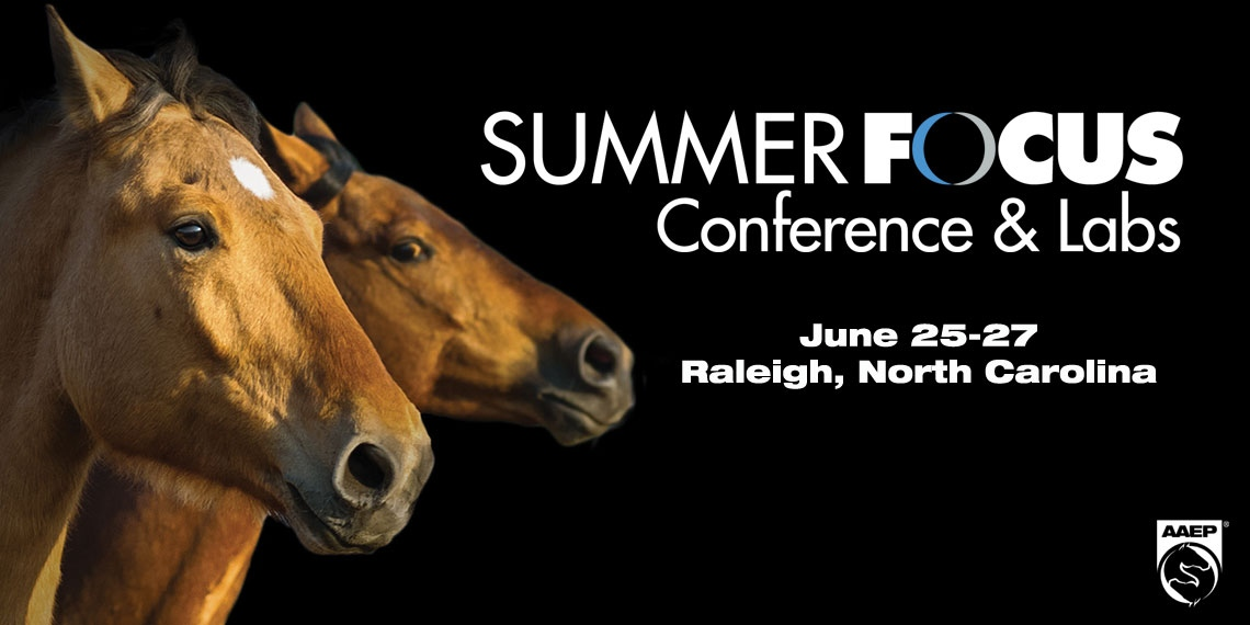Summer Focus Conference Labs Aaep